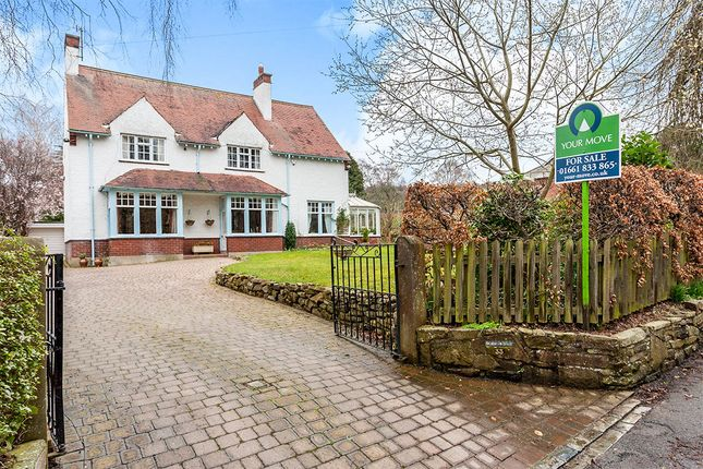 Thumbnail Detached house for sale in Apperley Road, Stocksfield