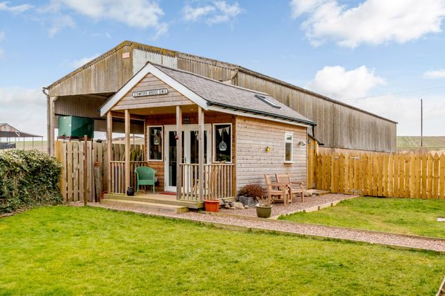 Darnchester west mains coldstream scottish borders td12 for Garden offices for sale scotland