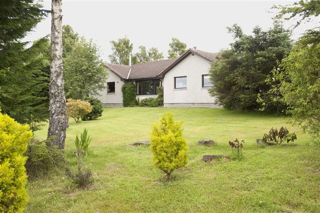 Property For Sale Dingwall Ross Shire