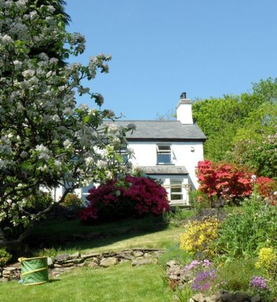 Rosside Garden From Pedrive