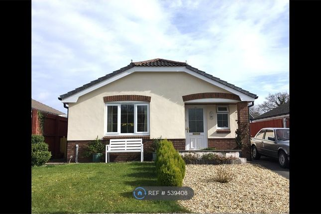 Thumbnail Bungalow to rent in Penygroes, Llanelli