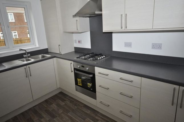 Thumbnail Flat to rent in Twizell Burn Walk, Pelton Fell, Chester Le Street
