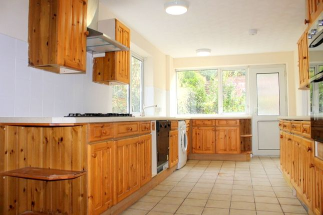 Thumbnail Semi-detached house to rent in Isfield Road, Brighton