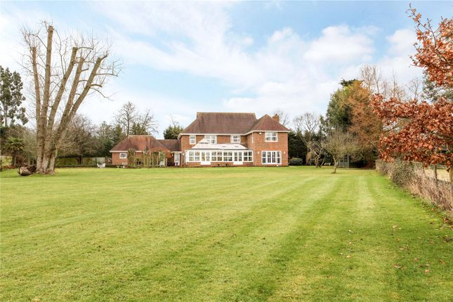 Thumbnail Detached house for sale in Winkfield Street, Winkfield, Berkshire