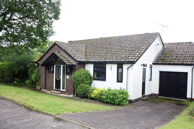 Thumbnail Detached bungalow for sale in Potters Close, West Hill, Ottery St. Mary