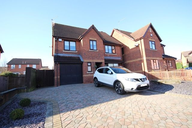 Thumbnail Detached house to rent in Hoskyns Avenue, Worcester