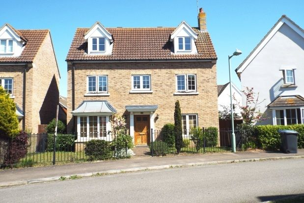 Thumbnail Detached house to rent in Juniper Road, Red Lodge, Bury St. Edmunds