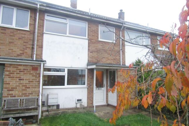 Thumbnail Terraced house to rent in Jasmine Gardens, Bradwell, Great Yarmouth