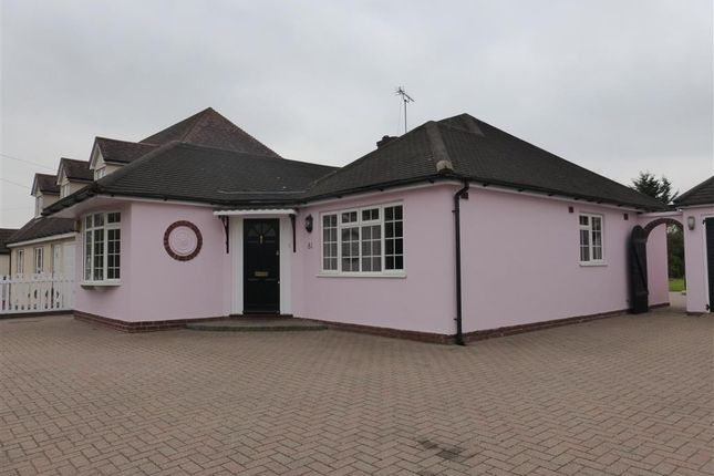 Thumbnail Bungalow to rent in Chignal Road, Chelmsford