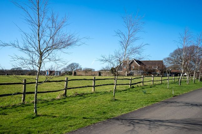Thumbnail Detached house for sale in Mill Lane, Laughton, Lewes