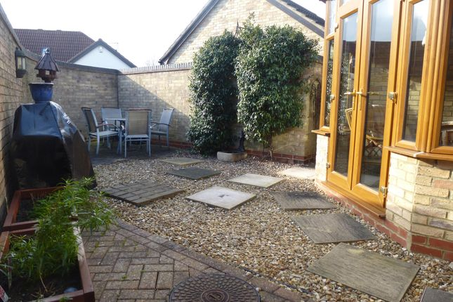 Thumbnail Semi-detached house to rent in Hythegate, Werrington, Peterborough