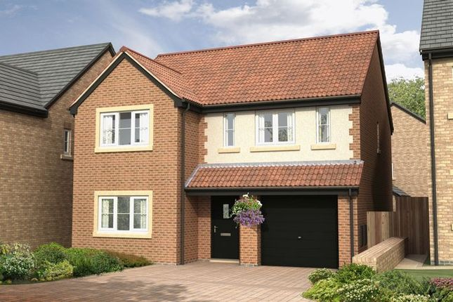 Thumbnail Detached house for sale in The Sycamore At Nursery Gardens, Stannington, Morpeth (1445 Sq.Ft.)