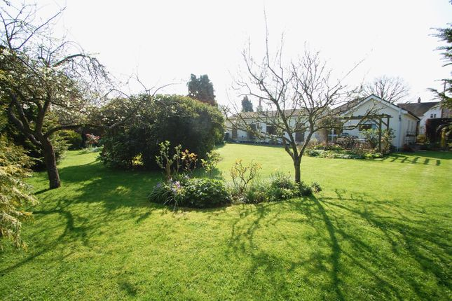 Thumbnail Detached bungalow for sale in Perry Road, Tiptree, Colchester