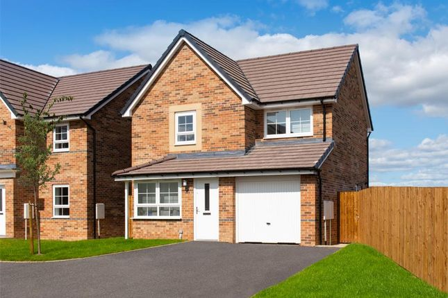 """Thumbnail Detached house for sale in """"Derwent"""" at Morgan Drive, Whitworth, Spennymoor"""