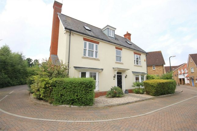Thumbnail Detached house for sale in Tailors Close, Great Notley, Braintree, Essex