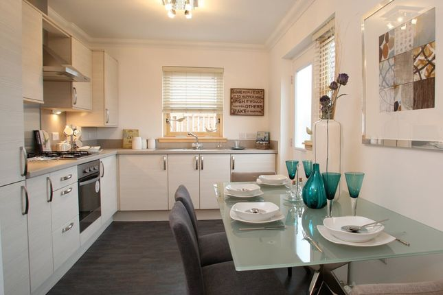 2 bed semi-detached bungalow for sale in Lyall Way, Laurencekirk AB30