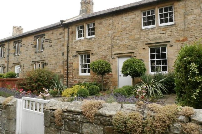 Thumbnail Cottage for sale in High Hauxley, Morpeth
