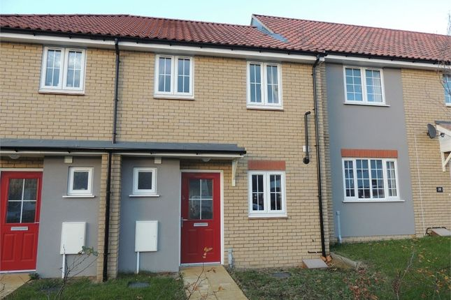 2 bed terraced house for sale in Park Lane, Downham Market
