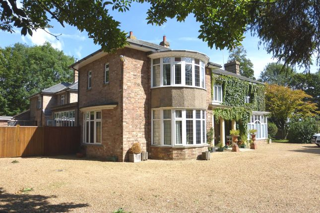 Thumbnail Detached house for sale in Main Road, Tydd, Wisbech
