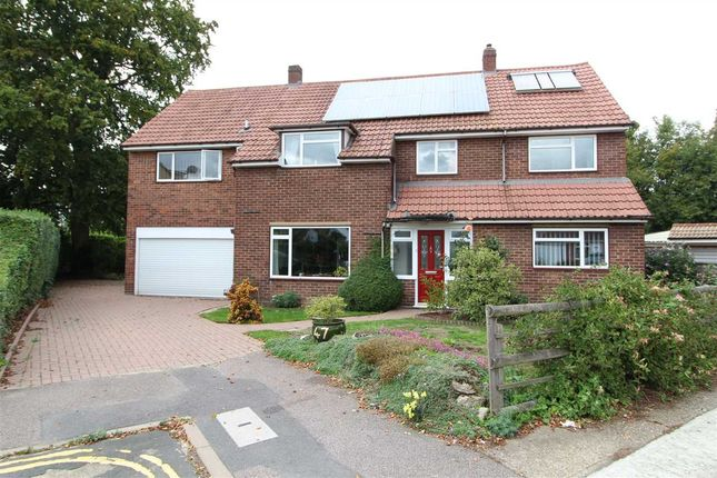 Thumbnail Detached house for sale in Endsleigh Court, Lexden, Colchester
