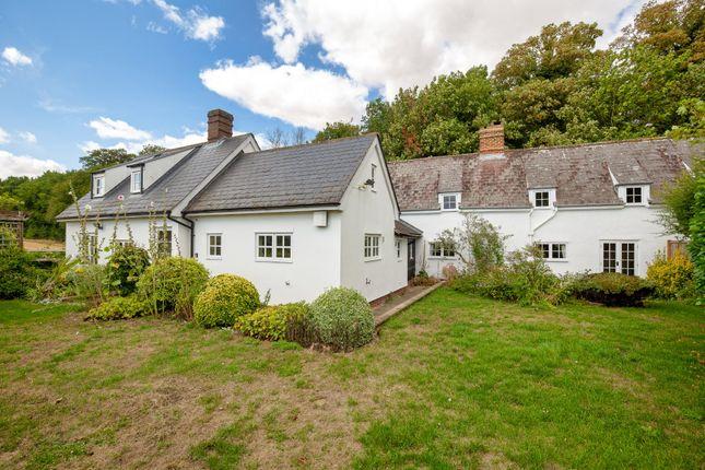 Thumbnail Semi-detached house for sale in Abington Pigotts, Royston
