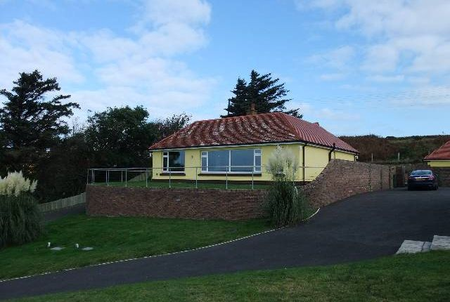 Thumbnail Bungalow to rent in Gwbert, Cardigan, Ceredigion