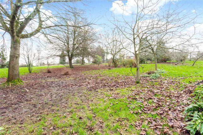 Picture No. 06 of Bayford Hill, Bayford, Wincanton, Somerset BA9