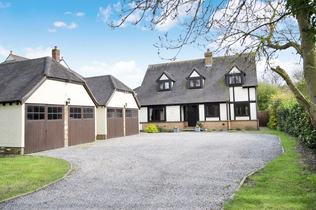 Thumbnail Detached house for sale in Mayland Close, Mayland, Chelmsford