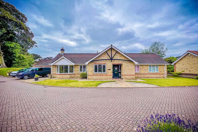 4 bed detached bungalow to rent in Princess Royal Close, Lincoln LN2