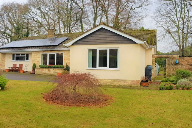 Thumbnail Detached bungalow for sale in High Bank, West Hill, Ottery St. Mary