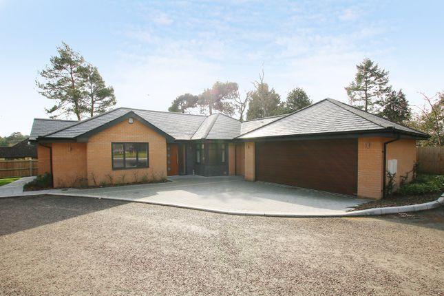 Thumbnail Detached bungalow for sale in Poppy Close, St Ives Park, Ringwood
