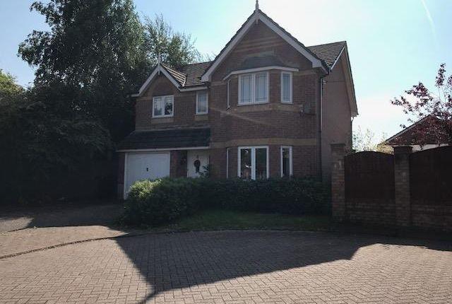 Thumbnail Detached house to rent in Blue Ridge Close, Great Sankey, Warrington