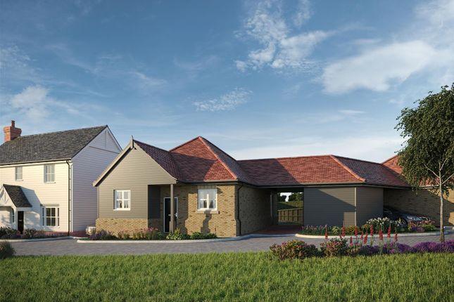 Thumbnail Detached bungalow for sale in Latchingdon Park, Burnham Road, Latchingdon, Essex