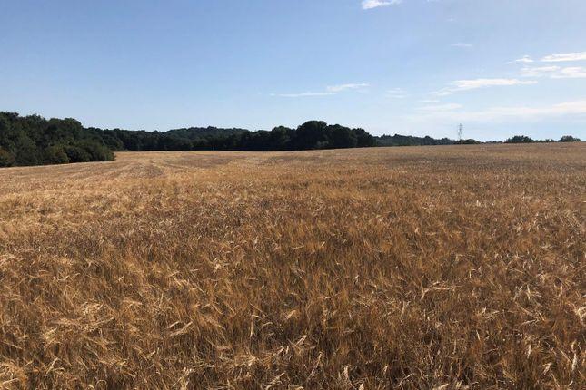 Thumbnail Land for sale in The Nineveh Lane Land, Nineveh Lane, Benenden, Cranbrook