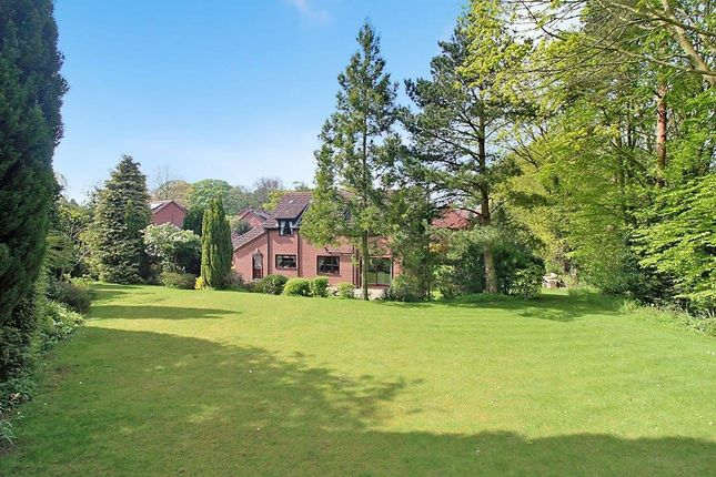 Thumbnail Detached house for sale in Brickfields, Strumpshaw, Norwich