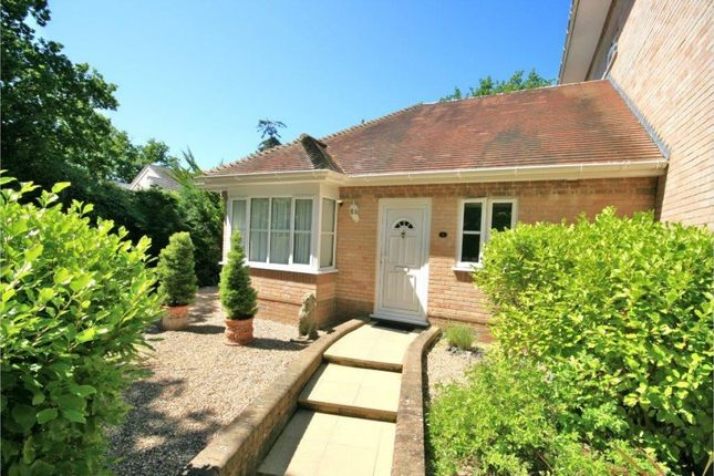 Thumbnail Bungalow for sale in Brownsea View Avenue, Poole