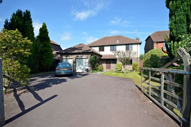 Thumbnail Detached house to rent in Plainwood Close, Chichester
