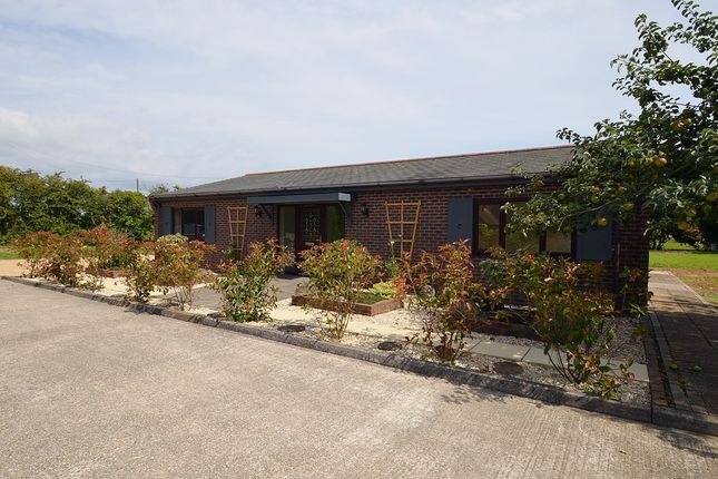 3 bed detached bungalow to rent in Easton Lane, Almodington, Chichester PO20