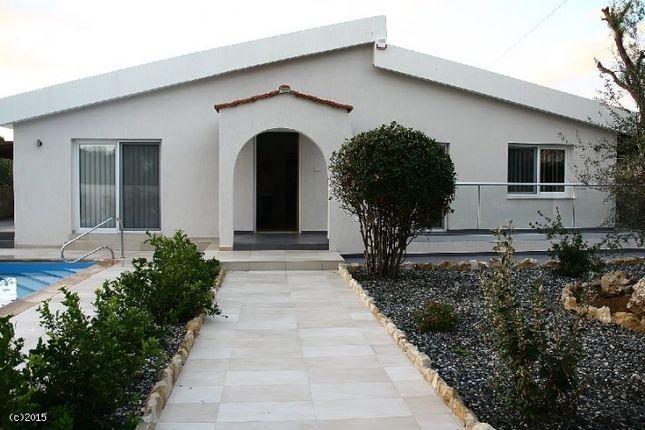 Coral Bay, Coral Bay, Paphos, Cyprus