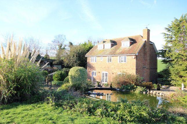 Thumbnail Property to rent in Cherry Lane, Great Mongeham, Deal