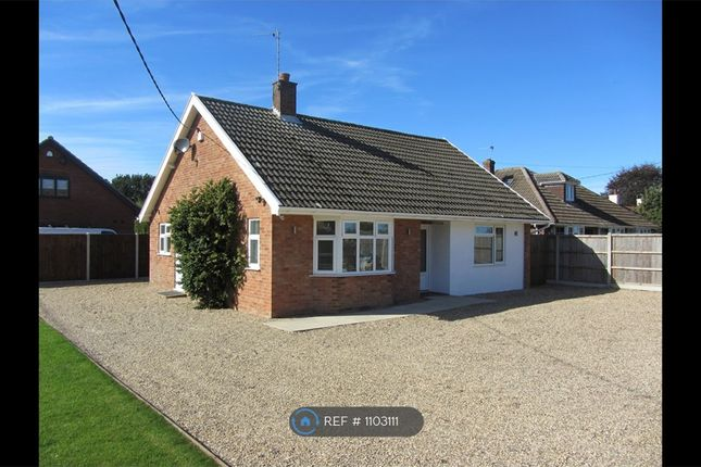 3 bed bungalow to rent in Woodbastwick Road, Blofield, Norwich NR13