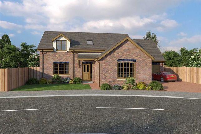 Thumbnail Detached bungalow for sale in Glanfryn Court, Heol Cwmmawr, Dreafch, Nr Cross Hands