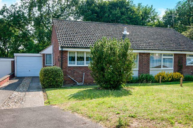 Thumbnail Semi-detached bungalow for sale in Maltward Avenue, Bury St. Edmunds