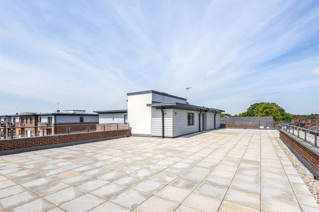 Lucas Court - Roof Terrace