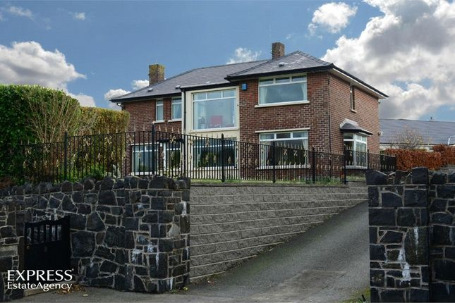 Thumbnail Detached house for sale in Branch Road, Larne, County Antrim