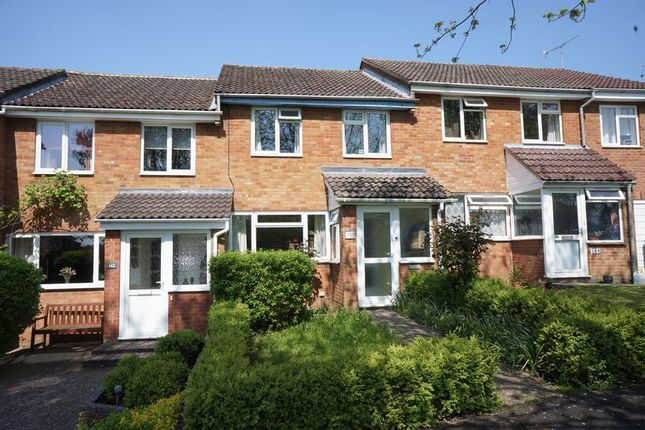 Thumbnail Terraced house to rent in Greenfields Avenue, Alton