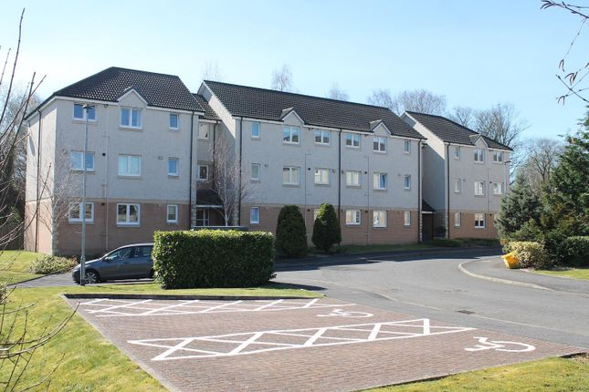 Thumbnail Flat for sale in Mcphee Court, Hamilton