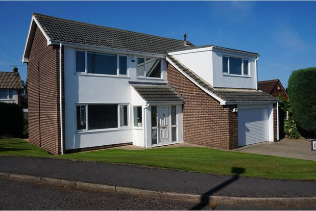 Thumbnail Detached house for sale in Edmonton Close, Barnsley