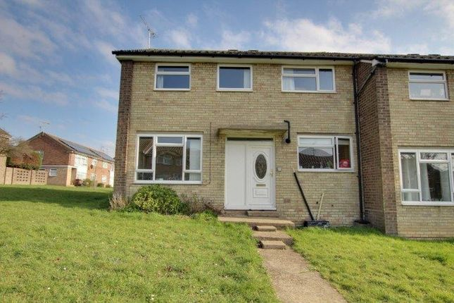 Thumbnail Semi-detached house to rent in Dahlia Walk, Colchester
