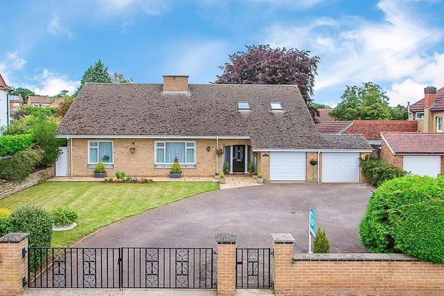 Thumbnail Detached house for sale in Rushton Road, Desborough, Kettering